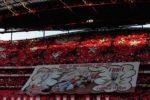 Orgulho e Amor pelo Benfica