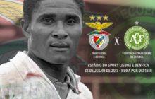 Afinal Benfica não vai defrontar Chapecoense