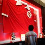 SL Benfica faz forcing para não perder jogador a custo zero