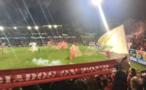 estoril benfica