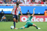 FC Porto e Benfica estão na corrida por José Van Rankin